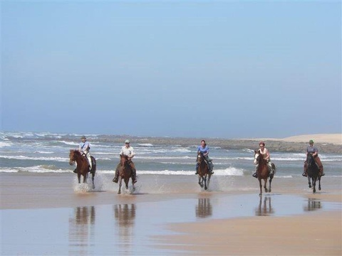 A horseride on the beach